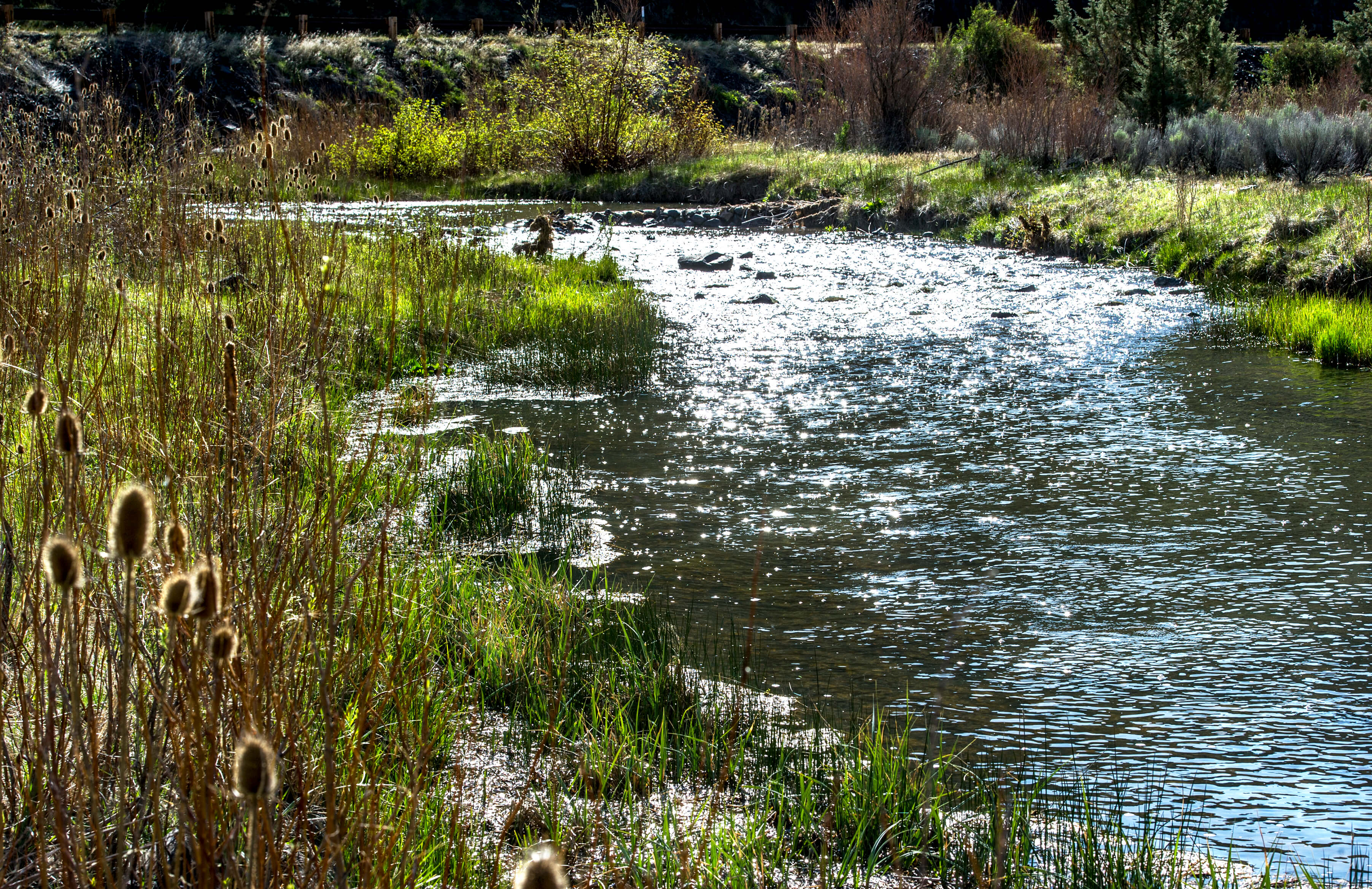 Crooked river fly fishing central or land for sale for Prineville reservoir fishing